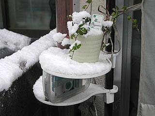 監視カメラ積雪